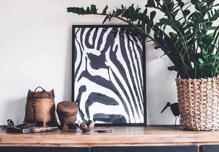 zebra-mobile